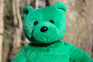 """Green Bear"" is one of the mascots in my office; no idea where he came from but we're grateful for him taking time to pose for this image."