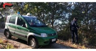 Chiaromonte, smaltimento illecito, denunciato il proprietario di un frantoio
