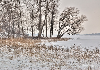 Ottawa River shoreline in winter.