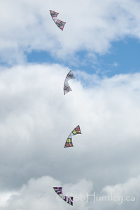 Rev Kites of the Rev Riders at the Windscape Kite Festival 2011