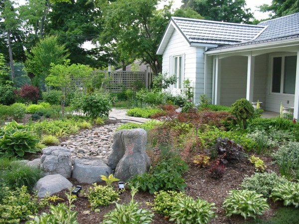 lawn alternatives robin aggus