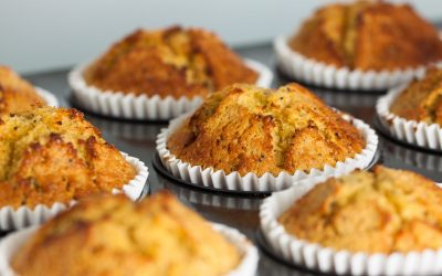 Gluten Free Fruit and Nut Muffins