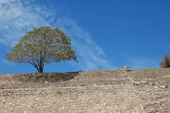 Oaxaca March 2010 105