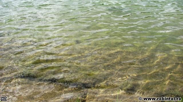 Apa curată, probabil de ploaie, strânsă într-un lac artificial amenajat peste o fostă exploatare de cărbune de suprafață, în Valea Jiului