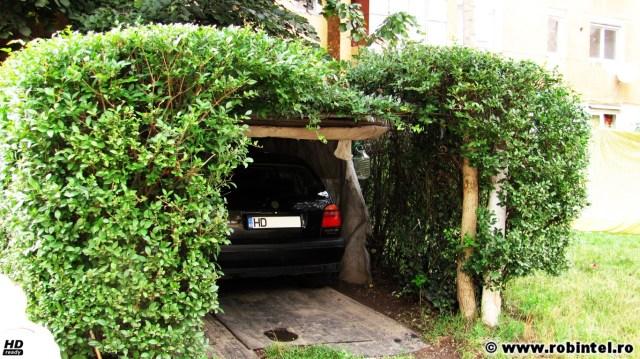 Garaj eco ce are pereții din gard viu