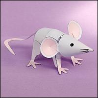 mouse-c200.jpg