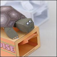 tortoise200.jpg