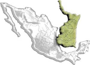 """beneficios fiscales tamaulipas"""
