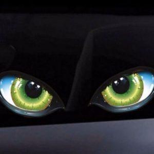 Aufkleber für Rasenroboter- Augen Bild 2