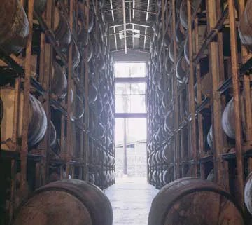 Rum 101 - Rum Basics: barrels of rum resting in the aging warehouse