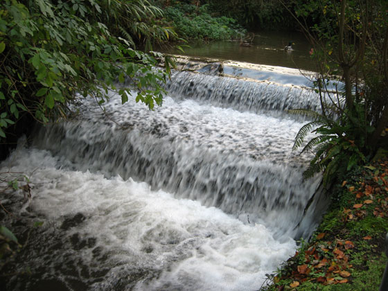 The East Wilder Brook running through Bicclescombe Park
