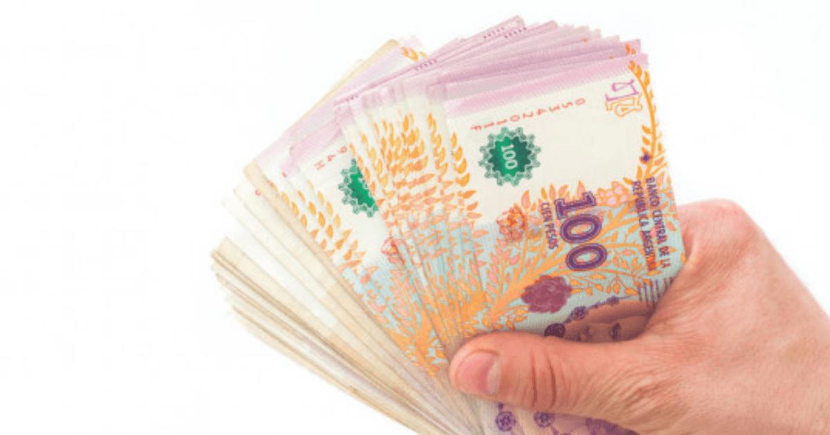 Los tres nuevos programas de Anses que pagan hasta 20.500 pesos por mes