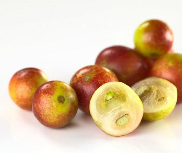 El camu camu (Myrciaria dubia), destacado berry de las riberas de ríos amazónicos por su contenido de vitamina C. Es procedente de Perú Brasil, Colombia, Venezuela