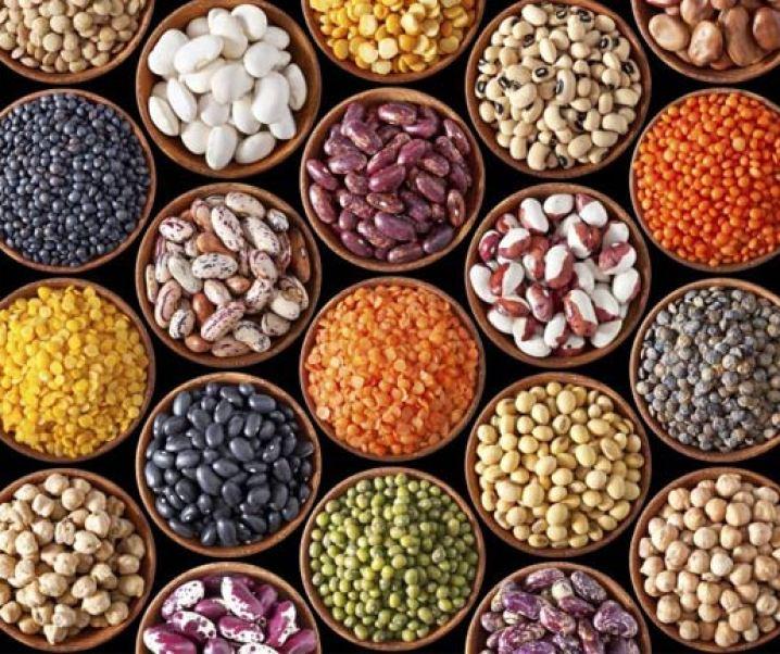 Propiedades alimentaria-nutricionales y medicinales de las legumbres