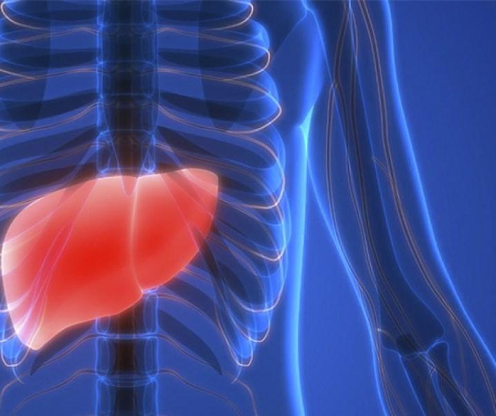 El hígado y sus cánceres