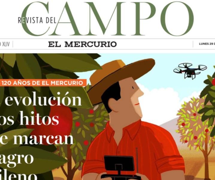 Muy interesante información entregó la Revista del Campo de El Mercurio del 29 de junio de 2020, correspondiente al número 2294. Informe, análisis de ella y otras consideraciones sobre el desarrollo de Chile y de su agricultura