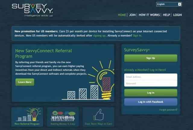 Make money online by SurveySavvy