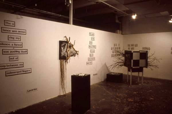 Tree Rochester Contemporary Art Center Roco