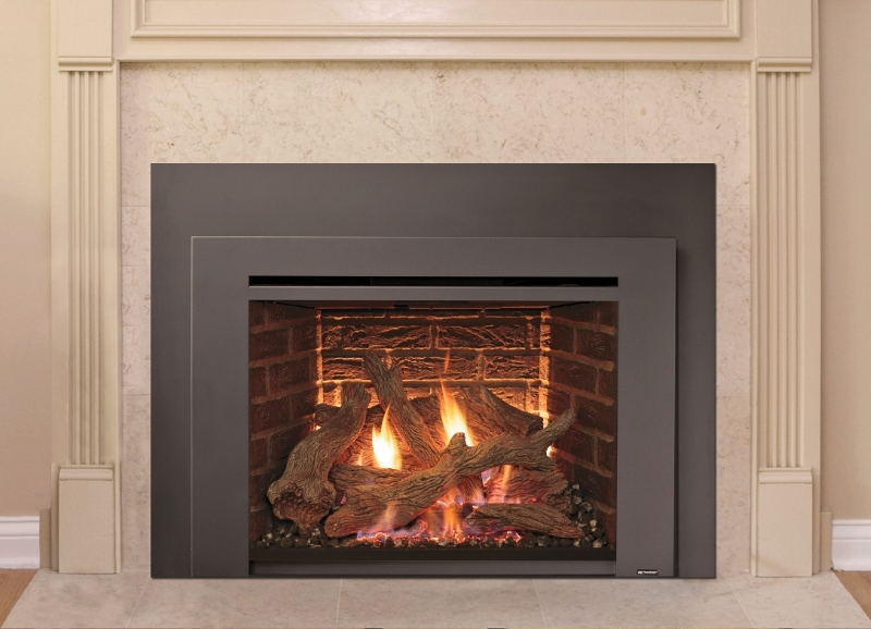 616 Gas Insert  Rochester Fireplace