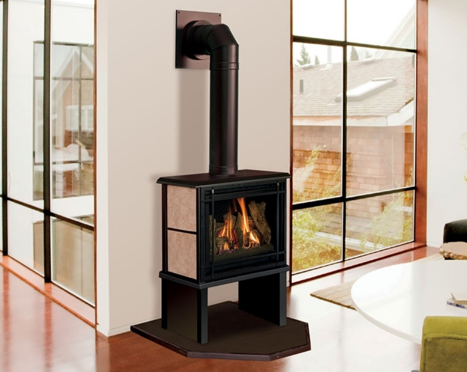Fireplaces of various styles and types  Rochester Fireplace