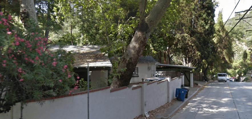 Domestication Home Decor
