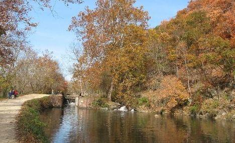 5 Best Running Routes in Washington DC Rock Creek Runner