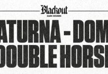 saturna-domo-double-hourse