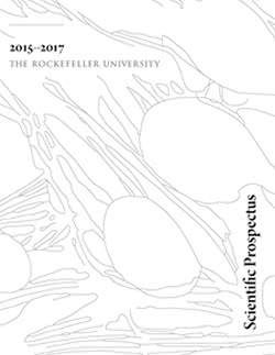 The Rockefeller University » University Publications