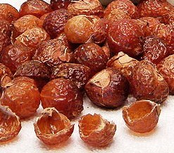 soap nuts canada