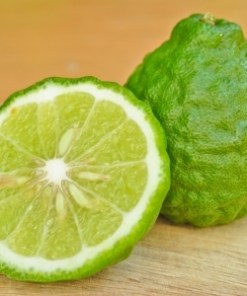 Essential Oil Bergamot 2