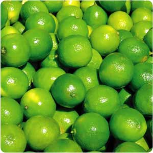 essential oil lime