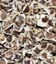 Moringa oil_seeds