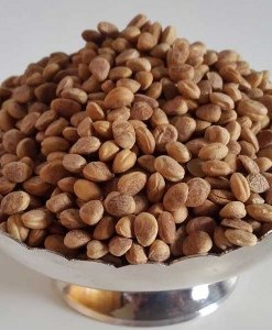 Chironji Oil seeds