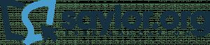 Saylor-Logo-Color