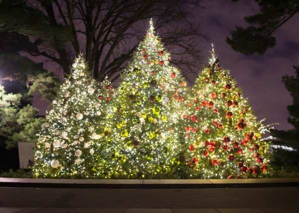7 Christmas Trees In York City Rockettes