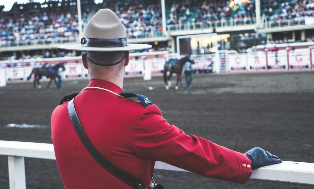 RCMP looking at horses