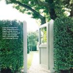 Awesome Fence With Evergreen Plants Landscaping Ideas 23