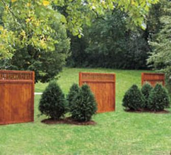 Awesome Fence With Evergreen Plants Landscaping Ideas 42