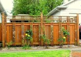 Awesome Fence With Evergreen Plants Landscaping Ideas 49