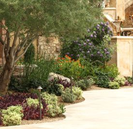 Texas Style Front Yard Landscaping Ideas 43