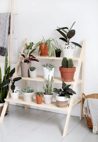 Cool Plant Stand Design Ideas for Indoor Houseplant 11