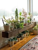 Cool Plant Stand Design Ideas for Indoor Houseplant 16