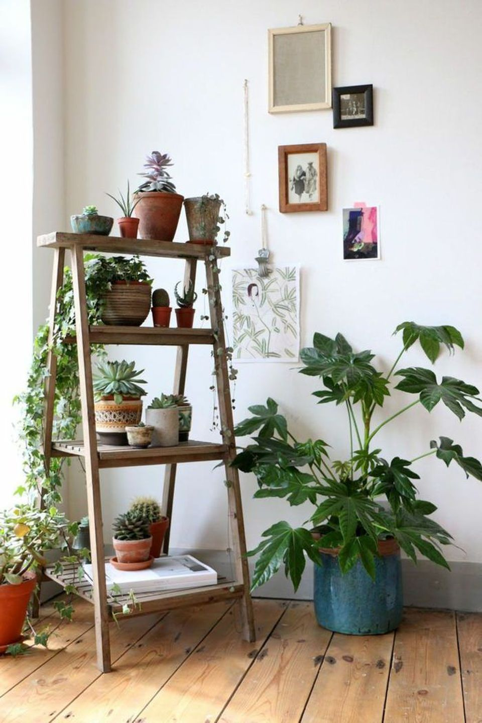 Cool Plant Stand Design Ideas for Indoor Houseplant 1