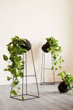 Cool Plant Stand Design Ideas for Indoor Houseplant 37