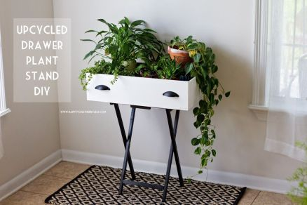 Cool Plant Stand Design Ideas for Indoor Houseplant 52