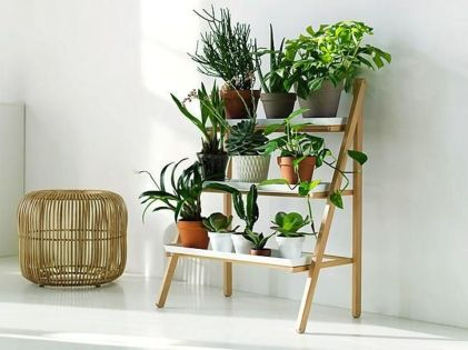 Cool Plant Stand Design Ideas for Indoor Houseplant 72