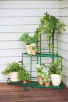 Cool Plant Stand Design Ideas for Indoor Houseplant 9