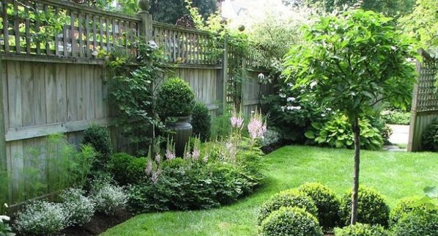 Privacy Fence Line Landscaping