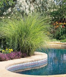 Stunning Outdoor Pool Landscaping Designs 60