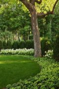 Stunning Privacy Fence Line Landscaping Ideas 70